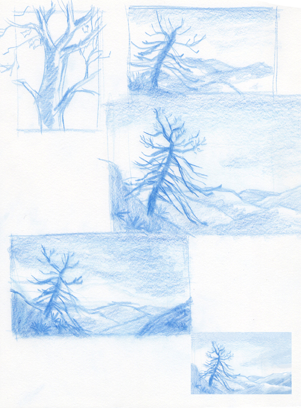 Sketches for a watercolor of a burnt tree.